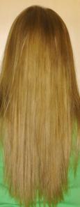 1860's Hair Twist with Bun